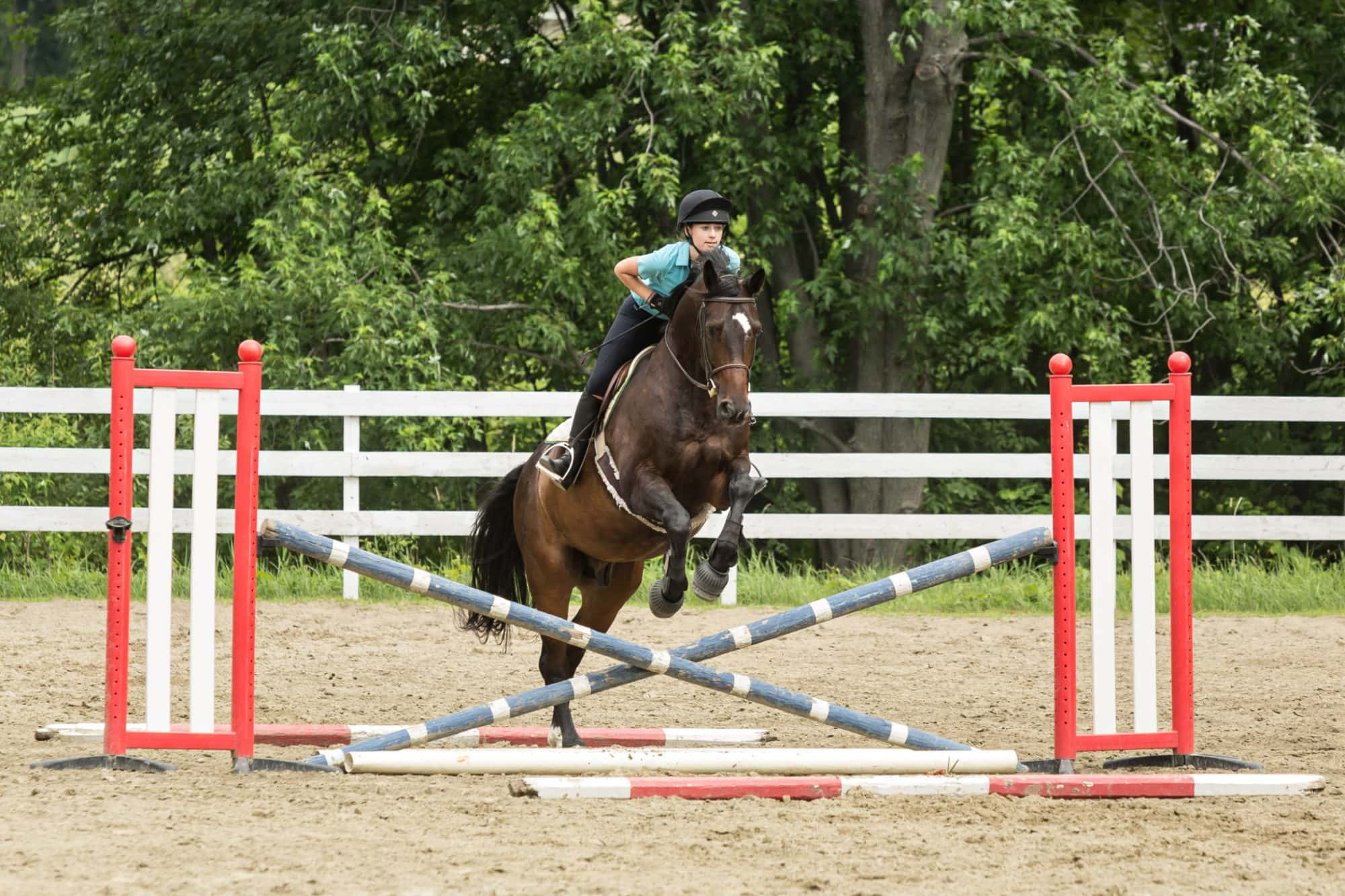 Girl riding horse in hurdle jumping drill